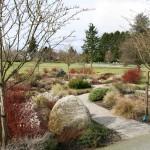 Infant Garden